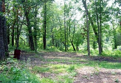 BEAUTIFUL SOUTHERN MISSOURI OZARKS, 1 ACRE, PRETTY, PRIVATE, $150 a MONTH