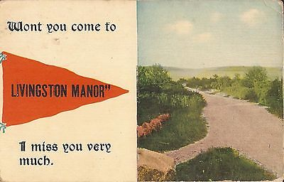 PENNANT - Livingston Manor, NEW YORK - 1913 - Sullivan County