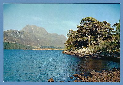 Dixon Postcard - Loch Maree, Wester Ross, Scottish Highlands
