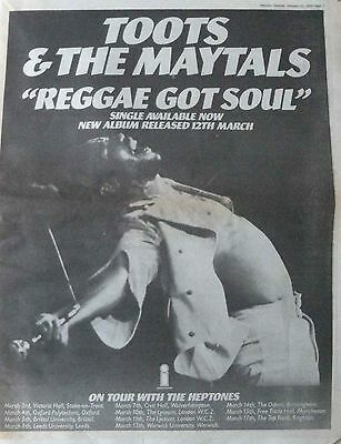 TOOTS & THE MAYTALS : Reggae Got Soul -Poster Size NEWSPAPER ADVERT- 1976