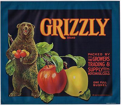 Crate Label Vintage Apple Rare Grizzly Bear Hotchkiss Colorado 1927 Original