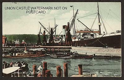 Postcard White Star Line Ss Suevic Durban South Africa 1914 Whale Factory Ship