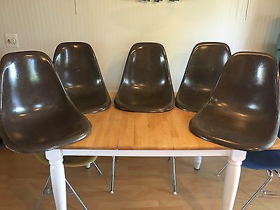 Herman Miller Charles Eames Fiberglass side Shell chair Seal brown Lot