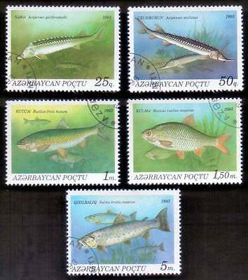 AZERBAIJAN (01/1) 1993 Fishes 5 Diff. Stamps ! Gift Your Children !