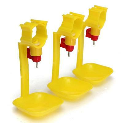 10 Pieces Poultry Water Drinking Cups- Chicken Hen Plastic Automatic Drinker