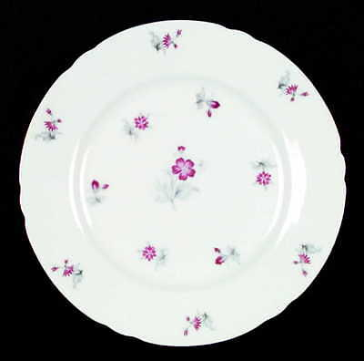 Shelley CHARM Salad Plate S3359362G3