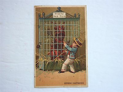 Victorian Trade Card For Imported French Goods Native In Bird Cage