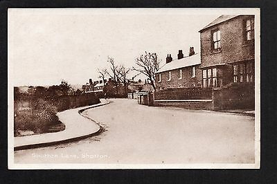Shotton - Shotton Lane - printed postcard