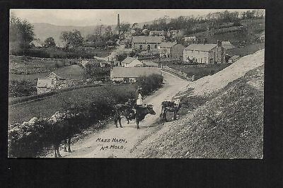 Maeshafn near Mold - printed postcard