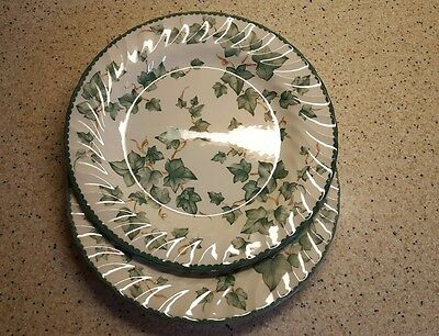 Two BHS Country Vine 10 inch dinner plates