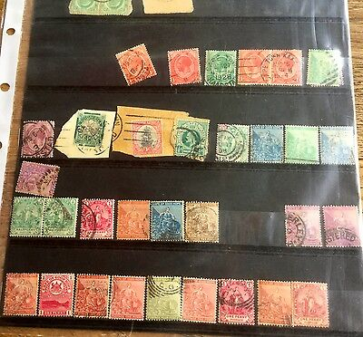 Sheets Of Stamps From South Africa  From 1900's Including Cape Of Good Hope