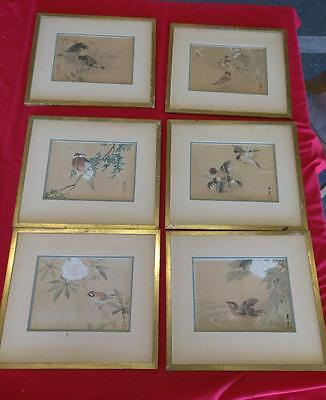 6 Vintage Old Japanese Woodblock Print Prints Wood Block Asian Birds Framed Set