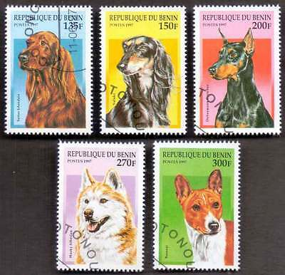 BENIN (28/1) 1997 Domestic Dogs Animals 5 Diff. Stamps ! Gift Your Children !