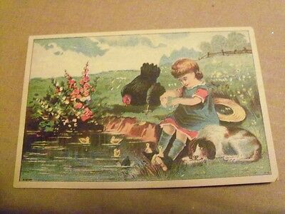 Postcard Like  Girl by Pond with ducks,dog and roaster     B390   Bufford