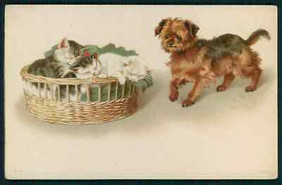 art Helena Maguire ? Yorkie Yorkshire Terrier dog original old c1900s postcard