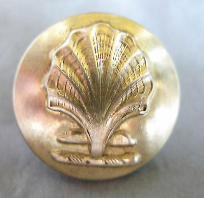 Large Antique Brass Livery Button - Gorgeous Shell