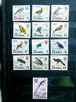 Gambia complete mint nh bird set
