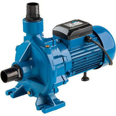 "Clarke ECP20A1 2"" Electric Centrifugal Pump (230V) - 7120405"