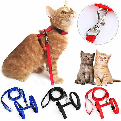 Pet Cat Puppy Adjustable Harness Collar Nylon Leash Lead Safety Walking Rope New