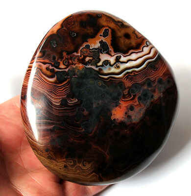 Z391 Natural Viewing Madagascar Agate Dream Colorful Crazy Texture Lace,Polished