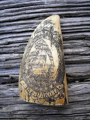 SCRIMSHAW REPLICA RESIN Sperm WHALE TOOTH Dakota of Nantucket New England