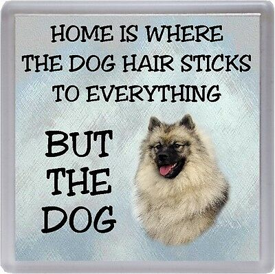 """Keeshond Coaster """"Home is Where the Dog Hair Sticks to .... ..."""" by Starprint"""