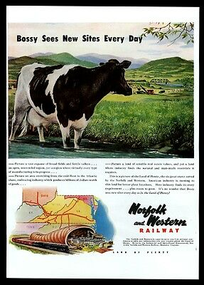 1948 dairy cow pasture art Norfolk and Western Railway vintage print ad