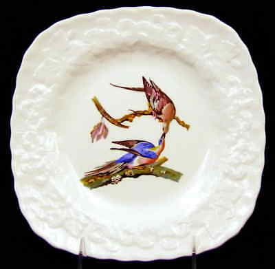 Alfred Meakin BIRDS OF AMERICA Square Luncheon Plate 4539695