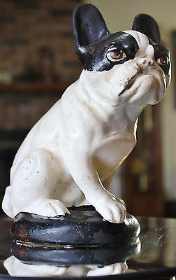 Old FRENCH BULLDOG 1920's Antique Germany WAXED DOG FIGURE Boston Terrier Puppy