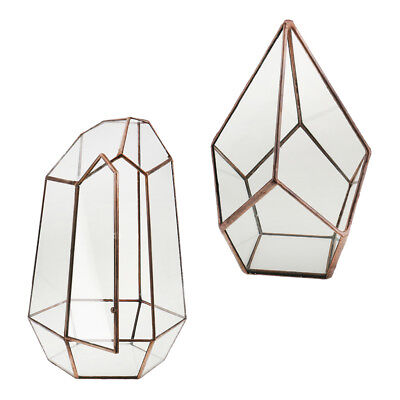 2x Copper Glass Geometric Terrarium Box Tabletop Succulent Air Plant Planter