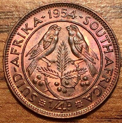 1954 South Africa 1/4 Penny Bronze Coin Uncirculated * Red