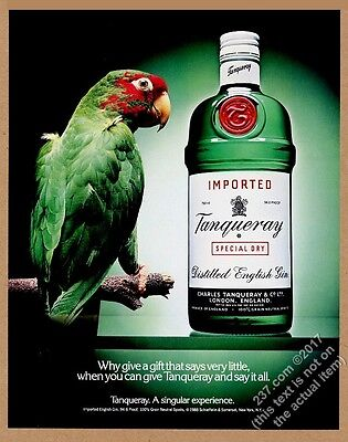 1988 Tanqueray Gin green parrot photo vintage print ad