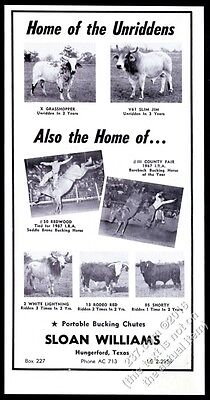 1958 Brahma bull V61 rodeo horse 7 photo Sloan Williams vintage print ad