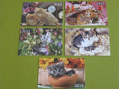 lot of 5 cat Lithuanian pocket calendars 2013 (free ship $20 min US only)