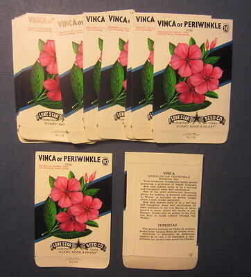 Wholesale Lot of 25 Old 1950's - VINCA / PERIWINKLE Flower SEED PACKETS - EMPTY