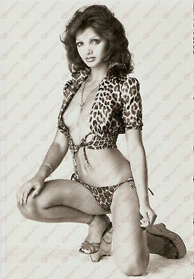 1975 ca EROTICA VINTAGE Stephanie MARRIAN wears a spotted top *Foto 17x25 cm