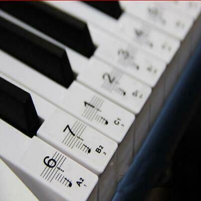 Transparent Keyboard Piano Stickers 54/61/76/88 Keys Set to learn Piano Clear W