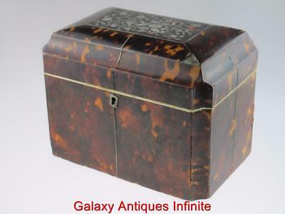 Huge Georgian Antique 19th Century Faux Tortoiseshell Tea Caddy Circa 1820