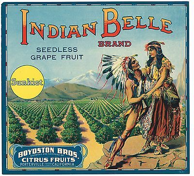 Crate Label Porterville Vintage American Indian Belle Stone Lithograph 1920S #3B