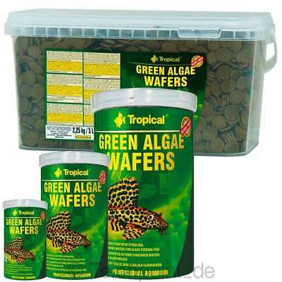 Tropical Green Algae Wafers Futtertabletten, Tabletten Wels Futter Chips