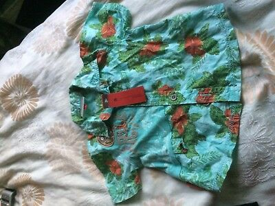 Catimini Boys Summer Short Sleeve Shirt  Age 12 Months New With Tags