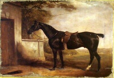 Vintage Art  Painting Print On Canvas Horse Ferneley Equine Rider Ready to Hang