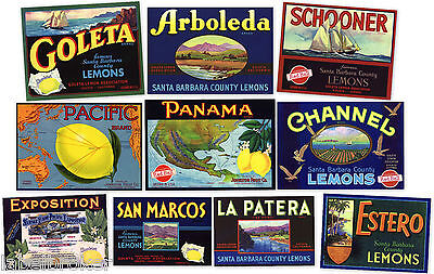 10 Lemon Crate Labels Vintage Lot Santa Barbara Goleta California Genuine Items