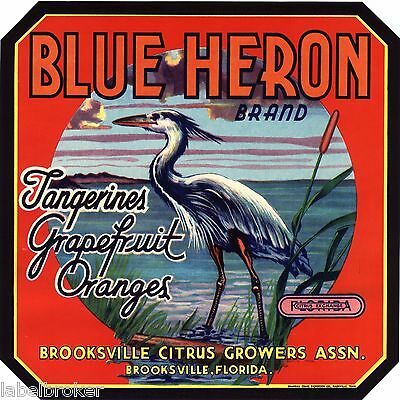 Genuine Blue Heron Crate Label Florida Vintage Brooksville 9X9 Wading Bird 1940