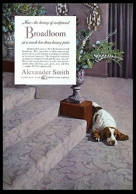 1952 English Springer Spaniel photo Alexander Smith carpet vintage print ad