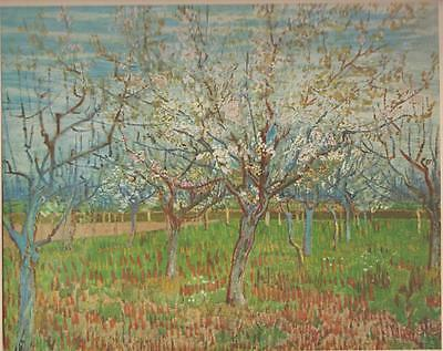 Vincent van Gogh The Orchard  Painted 1888 at Arles Art Print From Book