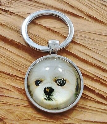 Adorable Shih Tzu Breed Lover Key Holder OR Purch Charm Rhodium Plated