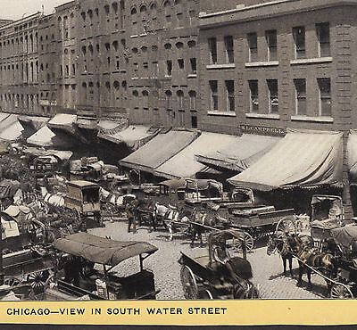 Chicago South Water Street ca.1905 Singer Sewing photo Souvenir Advertising Card