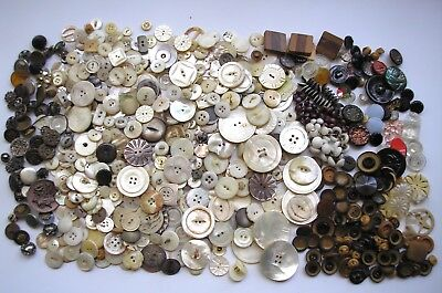2 lbs ALL Vintage Antique Buttons Lot MOP Shell Tagua Nut Metal Glass Victorian