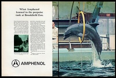 1967 Chicago Brookfield Zoo dolphin porpoise leaping photo Amphenol print ad